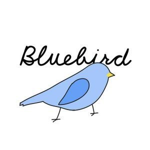 Bluebird-Berry-CheeseCake-Eliquid-Online-in-Pakistan-by-VapeStation1